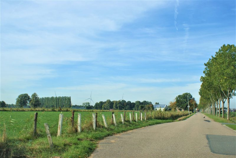 This route leads you through traditional Dutch polder land. Mills, dikes and farm roads with wood quays and reed beds mark the landscape.