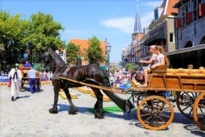 Directly from the farmer, the cheeses are transported by horse and cart to the cheese market in Hoorn