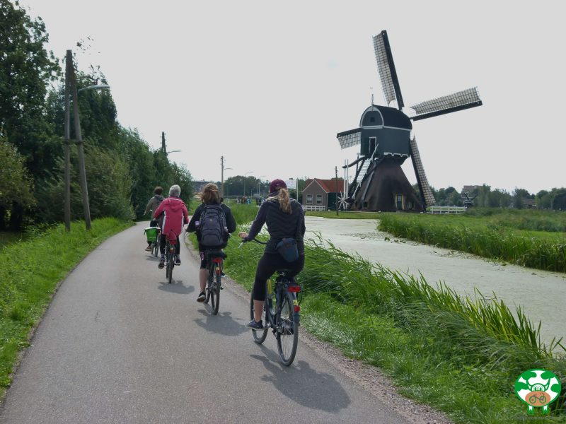 Cycle along the winding river Vlist on the way to Holland's Silver Capital: Discover Schoonhoven and the historic town of Nieuwpoort.