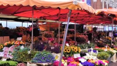 In the historic city center of Delft you will find the flower market on the Brabantse Turfmarkt. All kinds of smells and colors come at you. The market is held weekly